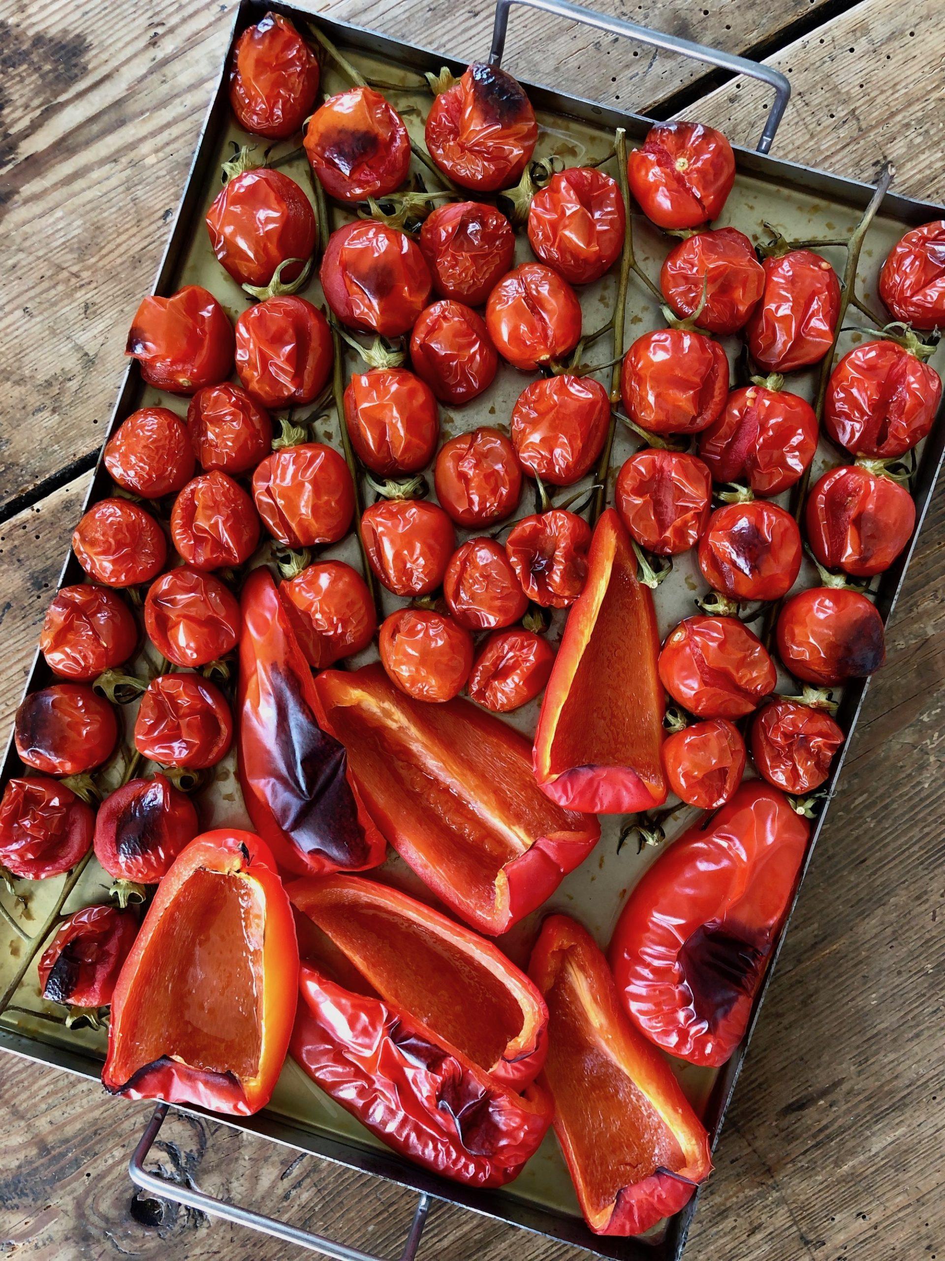 Rostade tomater och paprika på plåt